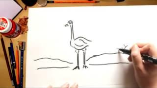 Como desenhar uma Avestruz - desenhos para crianças