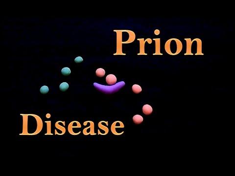 Video Prion - prion disease