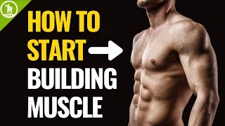 How To Start Building Muscle (For Beginners)