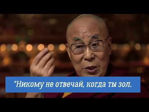 ОСТРОВ/ ДАЛАЙ ЛАМА, АФОРИЗМЫ/Ролик Б. Мышлявцева