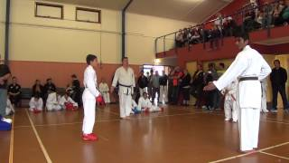 preview picture of video 'wrka kyoso cup ring1 d08 11 male begin kumite 04a'