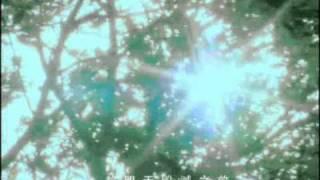 棉花糖katncandix2-陪你到世界的終結[OfficialMusicVideo]