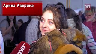 Выставка собак из приютов прошла в Москве