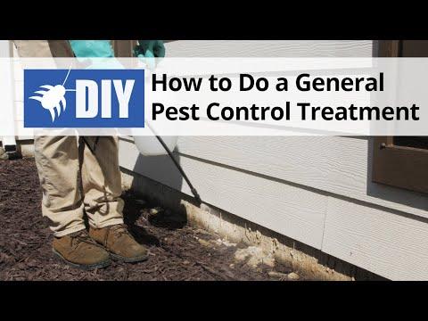 How To Do A General Pest Control Treatment Diy Pest Control Video Domyown Com