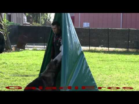 immagine di anteprima del video: Gaia Di Eros Ottobre 2011