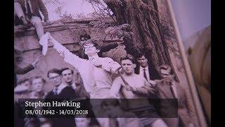 Frases de um gênio chamado Stephen Hawking