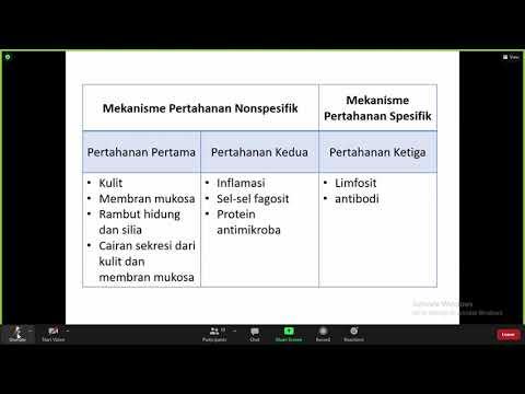 Enterobiosis bárányhimlő inkubációs periódus