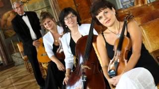 Rubin Quartet - Svatební hudba - Pochody