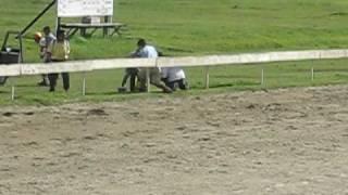 Horse Racing Accident At Royal Sabah Turf Club