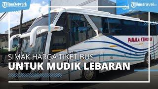 Boleh Mudik Sebelum 6 Mei 2021, Ini Harga Tiket Bus Jakarta-Banyuwangi