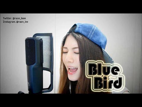 【라온】NARUTO SHIPPUDEN (ナルト疾風伝) - BLUE BIRD (Vocal Cover)