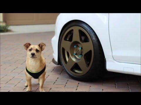 Fiesta ST gets new wheels - Fifteen52 Tarmacs