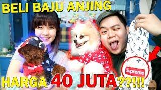 BAJU ANJING SEHARGA 40 JUTA RUPIAH? Video thumbnail