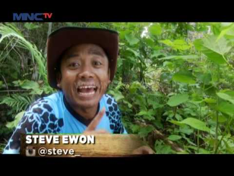 Video Mengenal Burung Nuri Raja Ambon - Jejak Rimba (4/6)