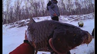 ЧУТЬ РУКИ НЕ ОТОРВАЛО!!!! САЗАНЯРА ПРЕТ КАК ТАНК!!! Рыбалка ! Первый лед!