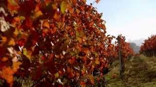 Dream of Italy 1: Full Umbria Episode