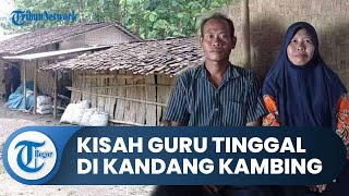 Kisah Guru 17 Tahun Mengabdi Digaji Rp350 Ribu dan Tinggal di Kandang Kambing, Camat Sampai Menangis