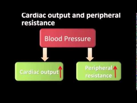 Ob Blutdruck erhöht Osteochondrose