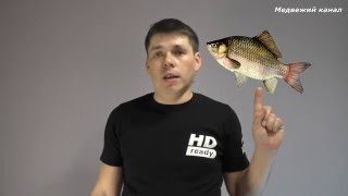 Смотреть онлайн Секреты рыбаков: где и чем ловить карася летом