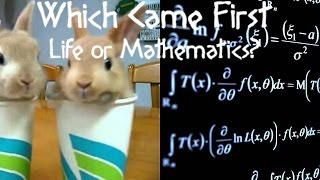Which Came First, Life or Mathematics? || Socrates Sunday