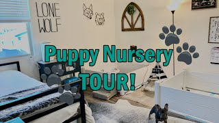Puppy Nursery TOUR!