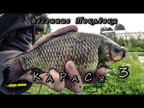 Serbatoi della regione Di Tomsk per pesca