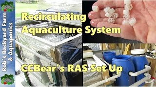 Recirculating Aquaculture System (RAS), a visit to see CCBear's set up..