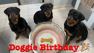 How to Make Dog smoothies for your puppy birthday! Our Rottweiler Kita turns 4!