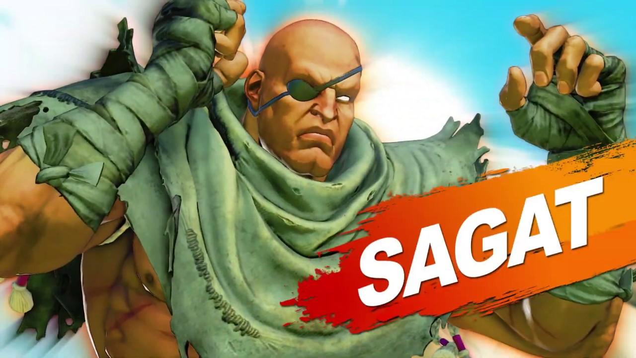 Street Fighter V Season 3 Character Pass Steam Title