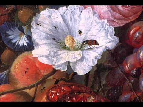 Divertimento in F (K. 138, Salzburg Symphony No. 3) (1772) (Song) by Wolfgang Amadeus Mozart