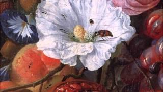 Mozart / Divertimento in F major, K. 138