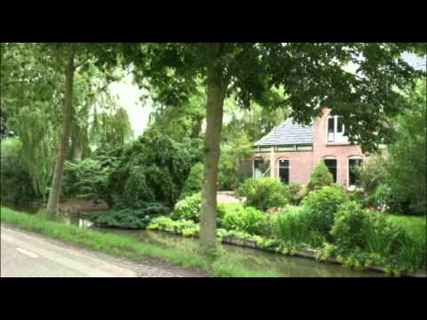 Netherlands Dutch views in Wijdewormer Noord-Holland Nederland Hollands landschap