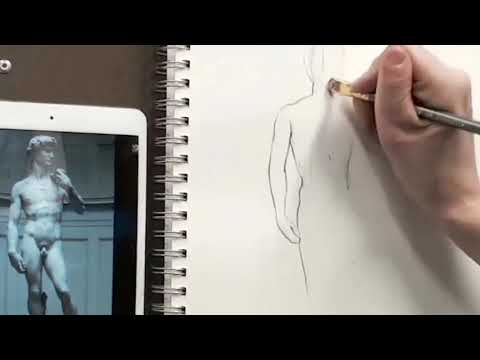 This is an excerpt from an online drawing lesson about contours.