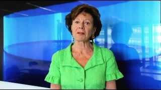 Neelie Kroes - European Commission - Former Commissioner