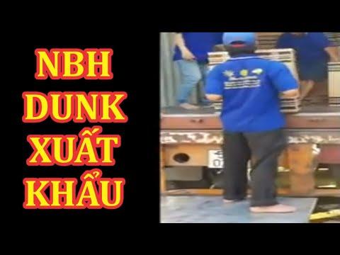 Xuất khẩu hàng sang Ấn Độ