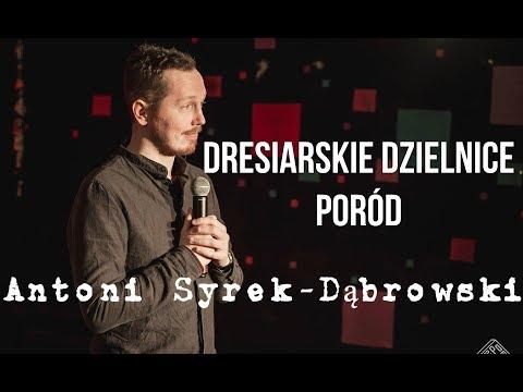 Antoni Syrek-Dąbrowski - Poród i dresiarze