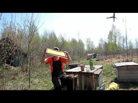 Пчеловодство. Подготовка старых рамок. Самодельный  наващиватель.Расширения  гнезда пчёл вощиной.