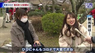 2月29日 びわ湖放送ニュース