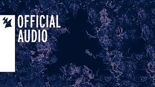 Armin Van Buuren Vs Shapov   La Résistance De L'Amour (Extended Mix)