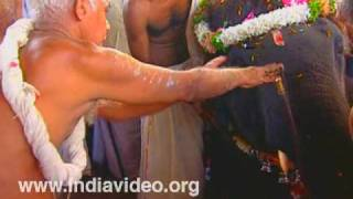 Nadayiruthal - Offering an Elephant to the God