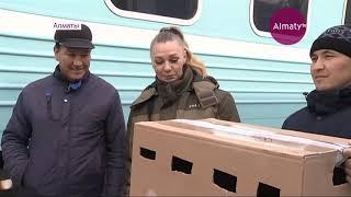 Раненого орла-могильника приютил Алматинский зоопарк (19.11.18)
