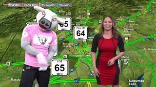 SA Rampage's T-bone does traffic for KENS 5