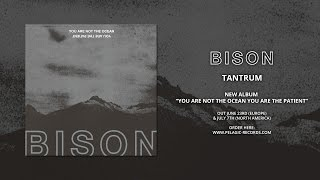 Bison's got some new tunes to check out