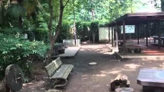 鎌田公園のイメージ
