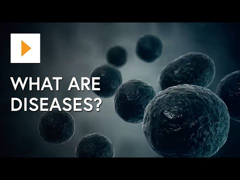 Video Pathogens and Infectious Disease ACSBL116 (clip)