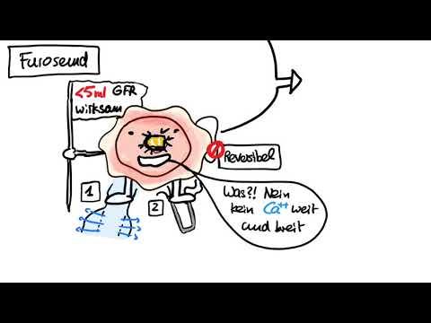 Herzinsuffizienz - Diuretika