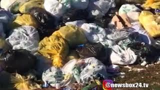 В Бухте Боярин на острове Русском мусорная свалка отравляет жизнь всему живому