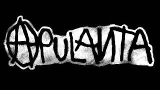 Apulanta - Anna mulle piiskaa (+lyrics)