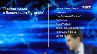 """""""Прямая линия с Владимиром Путиным"""": коротко по темам"""