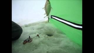 Рыбалка в мокроусовском районе курганская область
